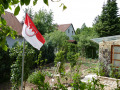 2019-06-15-Neunkirchen-Gemüsegarten-mit-Frankenfahne-Fo.-J.K.